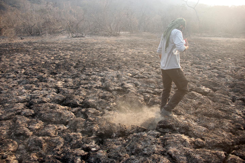 Intensidade do fogo deixou rastros de cinzas onde era vegetação e lagoas